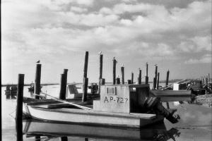 Eastpoint Oyster Fleet